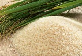 НЕДЕЛЯ РИСА! Рисовая крупа: выращивание, состав и сорта риса